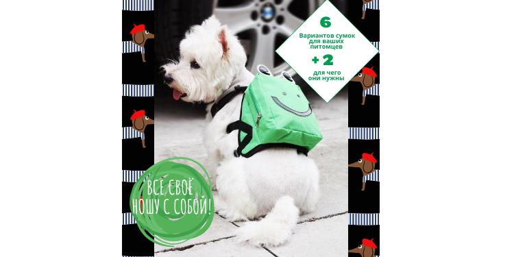 Одежда для собак - 8 рюкзаков для питомцев