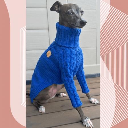 08 курсы шитья одежды для собак москва